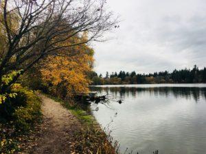 スタンレーパーク(Stanley Park)の紅葉